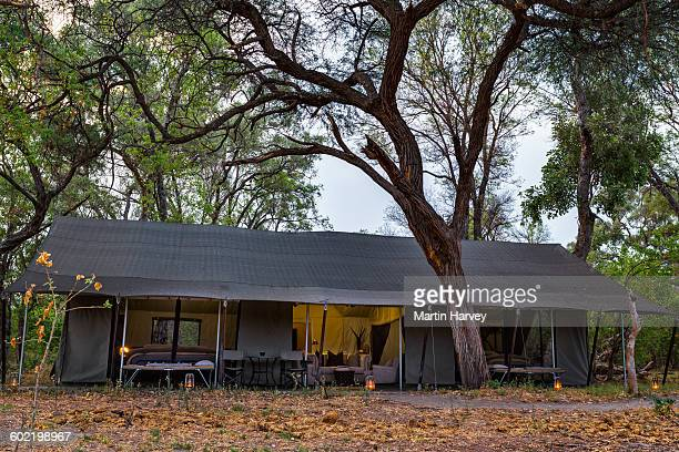 View into luxury family tent, Machaba Camp, Okavango Delta, Botswana