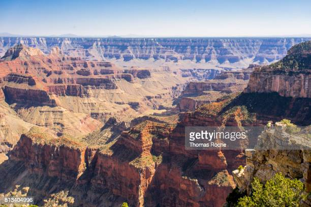 A view into the Grand Canyon