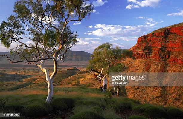 view into valley from escarpment, karijini national park, wa - austrália ocidental - fotografias e filmes do acervo