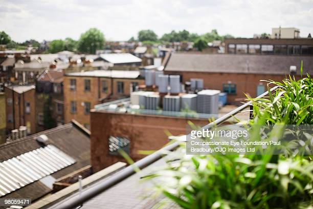 """view looking out over roof tops - """"compassionate eye"""" stock pictures, royalty-free photos & images"""