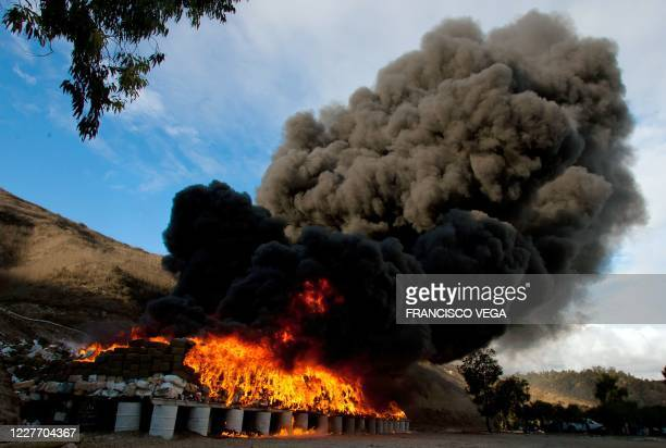 View of 134 tonnes of marijuana burning on October 20, 2010 in the border town of Tijuana, Mexico, seized by the Mexican Army after a clash with drug...