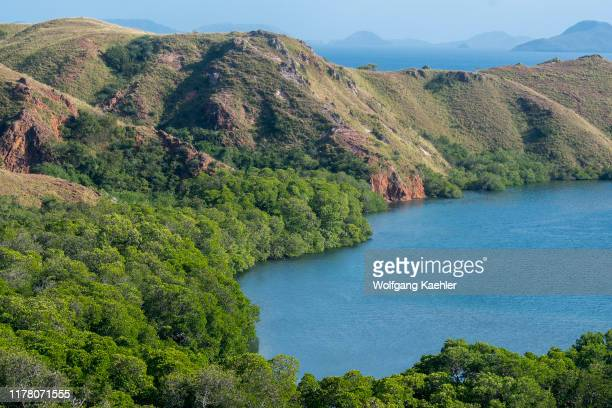 View of a bay from a hill on Rinca Island part of Komodo National Park Indonesia