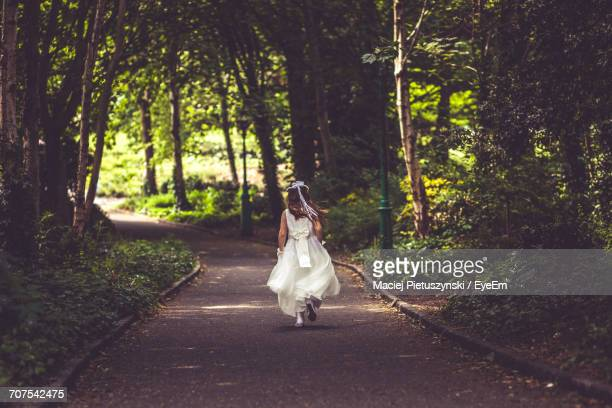 View Of A Bride In Forest
