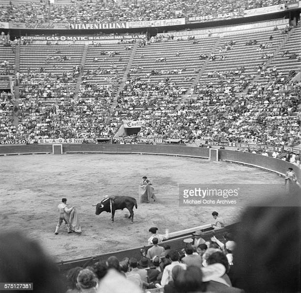 A view of a bull fight in Cuernavaca Mexico