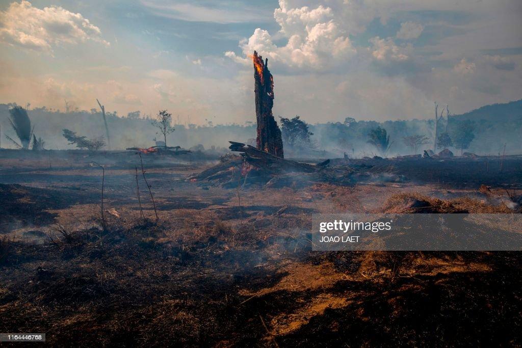 BRAZIL-FIRE-AMAZON : News Photo