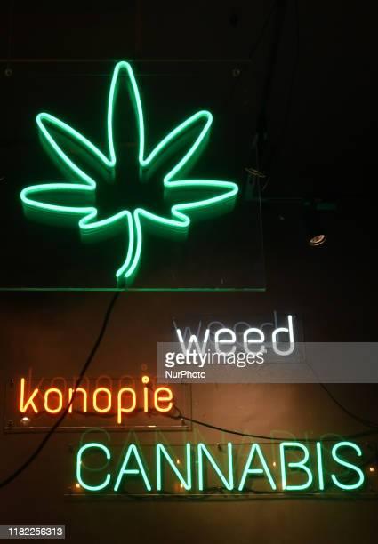 View of a Cannabis Shop window in Krakow's center. On Tuesday, November 12 in Krakow, Lesser Poland Voivodeship, Poland.
