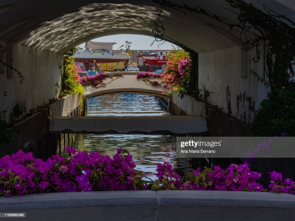 View of a cannal in Port of Mogan village with white houses : Stock Photo