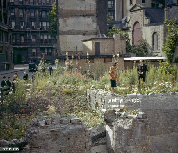 View of a couple examining wildflowers growing on a bomb site in Gresham Street in the City of London in July 1943