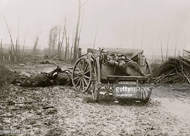 View of a dead German artilleryman on a cart with dead horses in the background 1910s