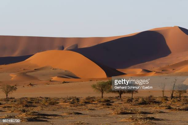 view of a desert - gerhard schimpf stock photos and pictures