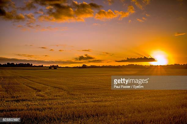 View Of A Field At Sunrise