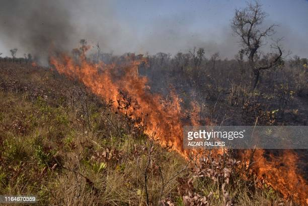View of a fire near Charagua in Bolivia, on the border with Paraguay, south of the Amazon basin, on August 29, 2019. - Fires have destroyed 1.2...