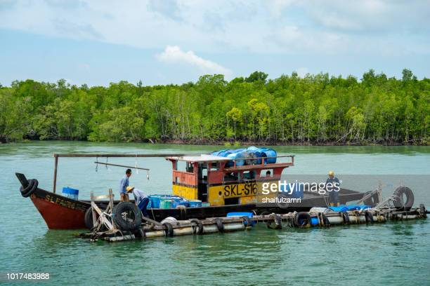 A view of a fishermen's activity at Pulau Ketam (Crab Island). This island is famous for sea food products and restaurants.