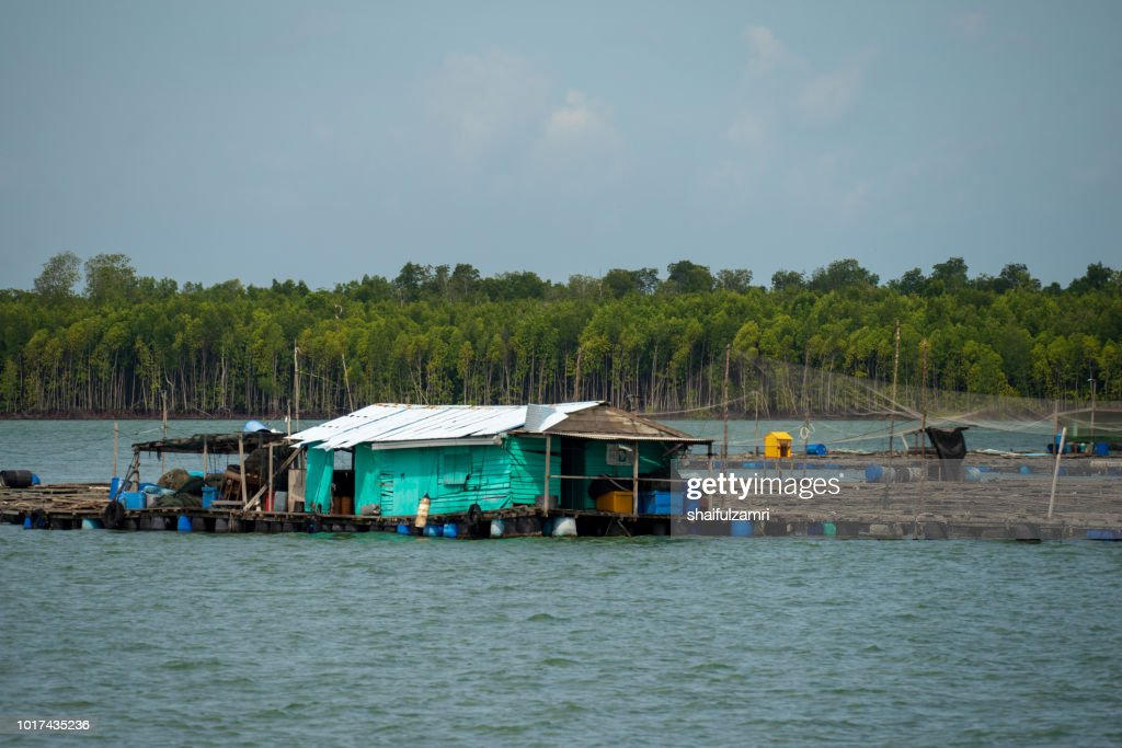 A view of a fishermen's village on stilts besides the sea in Pulau Ketam (Crab Island). This island is famous for sea food products and restaurants. : Stock Photo