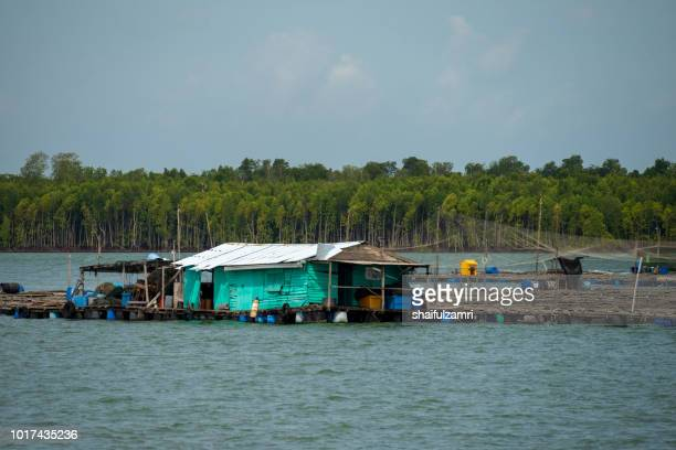 a view of a fishermen's village on stilts besides the sea in pulau ketam (crab island). this island is famous for sea food products and restaurants. - shaifulzamri stock pictures, royalty-free photos & images