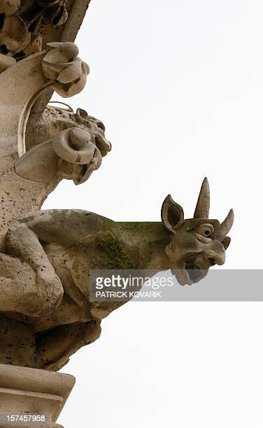 A view of a gargoyle on the side of the NotreDame de Paris cathedral on November 30 in Paris AFP PHOTO / PATRICK KOVARIK