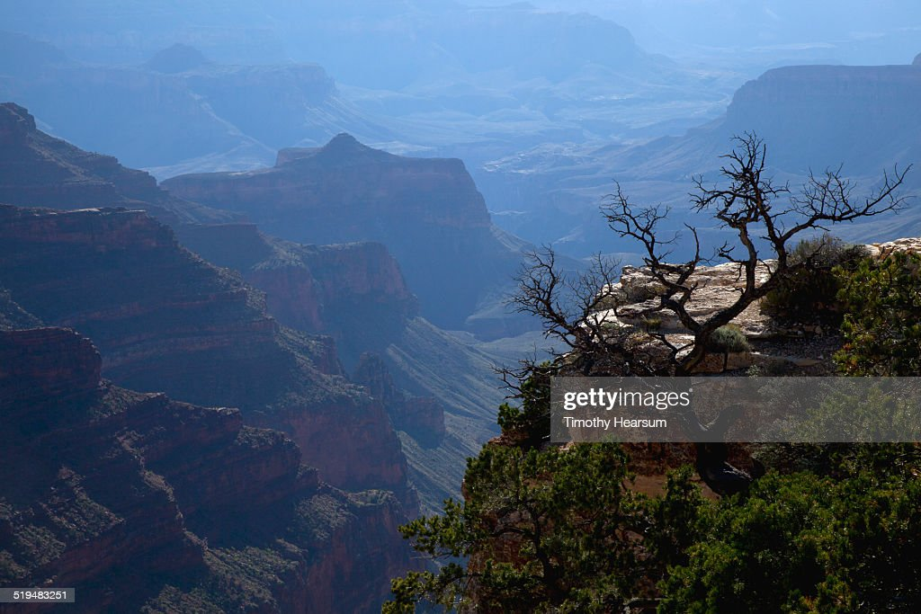 View of a hazy Grand Canyon from the North Rim : Stock Photo