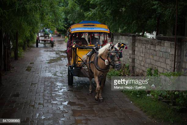 View Of A Horse Cart On Street