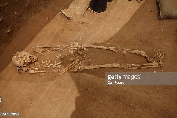 View of a human skeleton found on the site of the first Philistine cemetery ever found , Ashkelon National Park, Ashkelon, Israel, June 28, 2016. A...