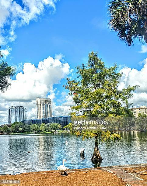 View of a Lake Eola, Orlando.