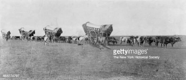 View of a line of Conestoga Wagons on the Prairie as they head westward 1860s