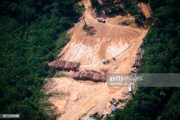 View of a log yard in a management area in a Quilombola land in Oriximina during an overflight by Greenpeace activists over areas of illegal...