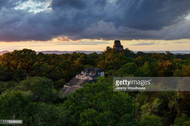 view of a mayan temple in the jungle of tikal - jeremy woodhouse stock pictures, royalty-free photos & images