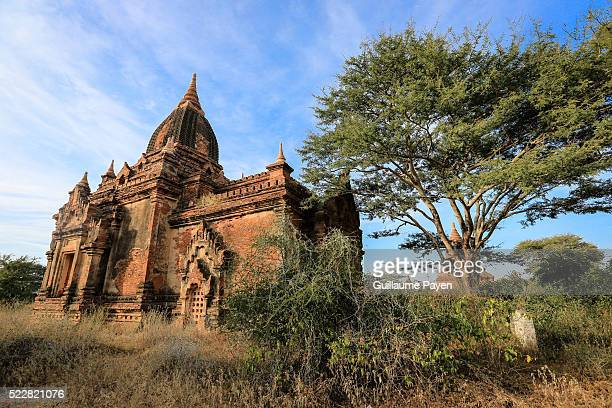 A view of a pagoda in the Bagan Archaeological Zone The city used to be the capital of the Kingdom of Pagan which was the 1st kingdom to unify the...