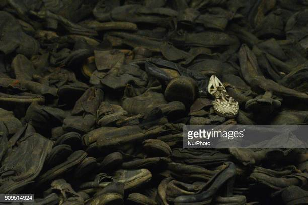 A view of a permanent exhibition 'Evidence of crime' inside the Auschwitz 1 camp seen just a few days ahead of the 73rd anniversary of the liberation...