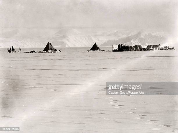 A view of a pony camp on the Great Ice Barrier photographed during the last tragic voyage to Antarctica by Captain Robert Falcon Scott circa December...