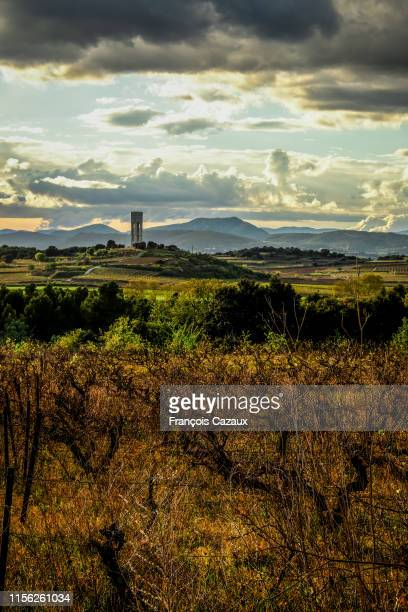 view of a provencal landscape with wineyard, hills and a water tower - wineyard stock photos and pictures