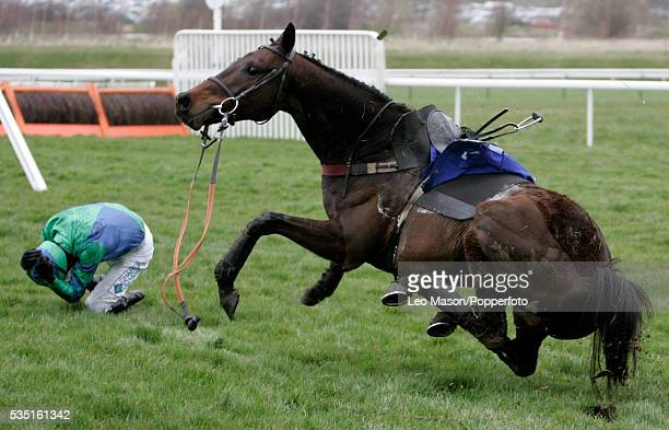 View of a rider falling from his horse in the Racing Post Plate Handicap Chase during the 2007 Cheltenham Festival at Cheltenham racecourse England...