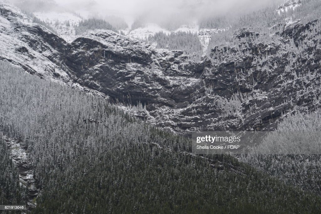 View of a rocky mountain : Stock Photo