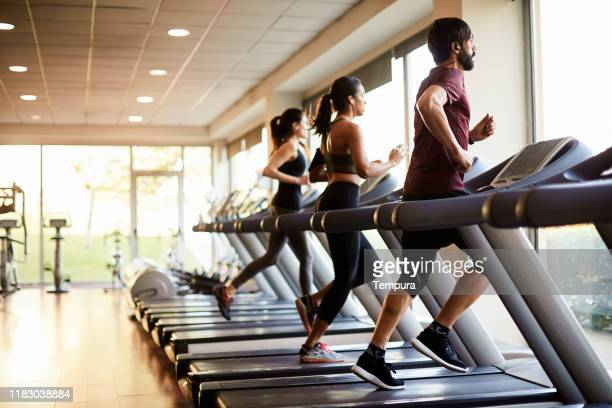 view of a row of treadmills in a gym with people. - health club stock pictures, royalty-free photos & images