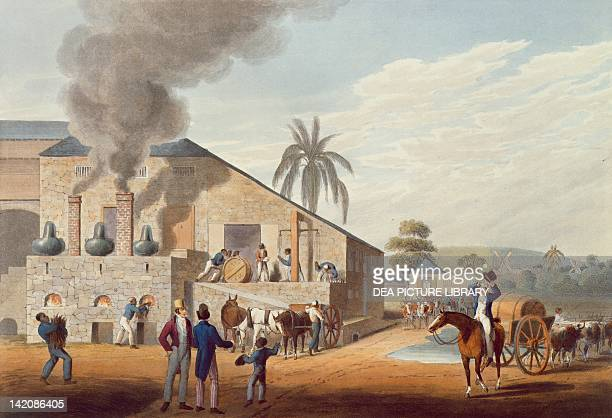 View of a rum distillery in the West Indies from outside engraving by William Clark