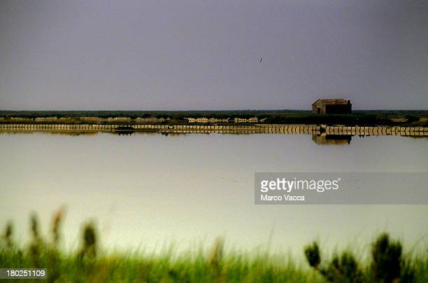 view of a saltpan with house on the background - fiume po foto e immagini stock