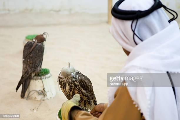 View of a shop to buy falcons with a man in traditional clothes called dishdasha at Souq Waqif on December 24 2011 in Doha Qatar The FIFA World Cup...