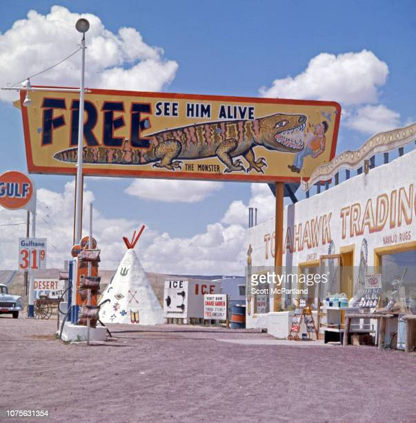 View of a sign advertising a Gila monster exhibit at the Tomahawk Trading Post outside Albuquerque New Mexico August 1963 Gulfbrand gasoline pumps...