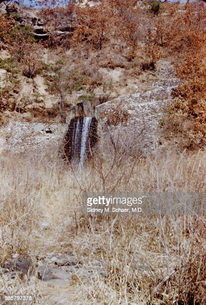 View of a small waterfall as seen through dry brush South Korea January 1952 The photo was taken near the 8063rd MASH