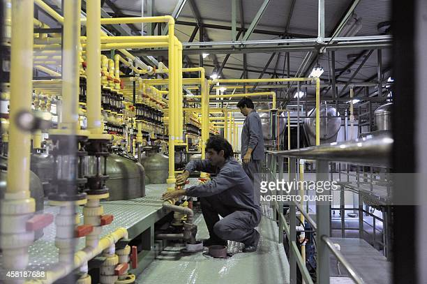 View of a stevia processing plant in on October 31 2014 in Ypacarai 40km from Asuncion Following the approval by the US and European health...