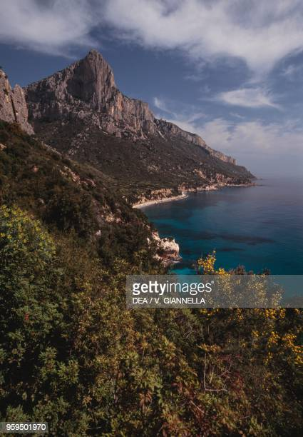 View of a stretch of coast from Pedra Longa with Punta Giradili in the background National Park of the Bay of Orosei and Gennargentu Ogliastra...