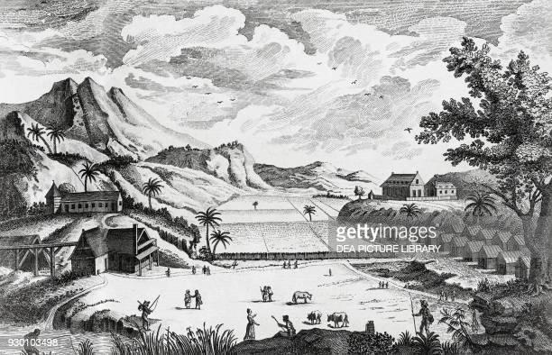 View of a sugar plantation French West Indies Antilles engraving from Encyclopedie ou Dictionnaire raisonne des sciences des arts et des metiers by...