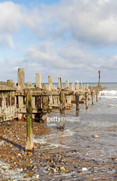 A view of a timber breakwater used as sea defence on the North Norfolk coast at Overstrand Norfolk England United Kingdom