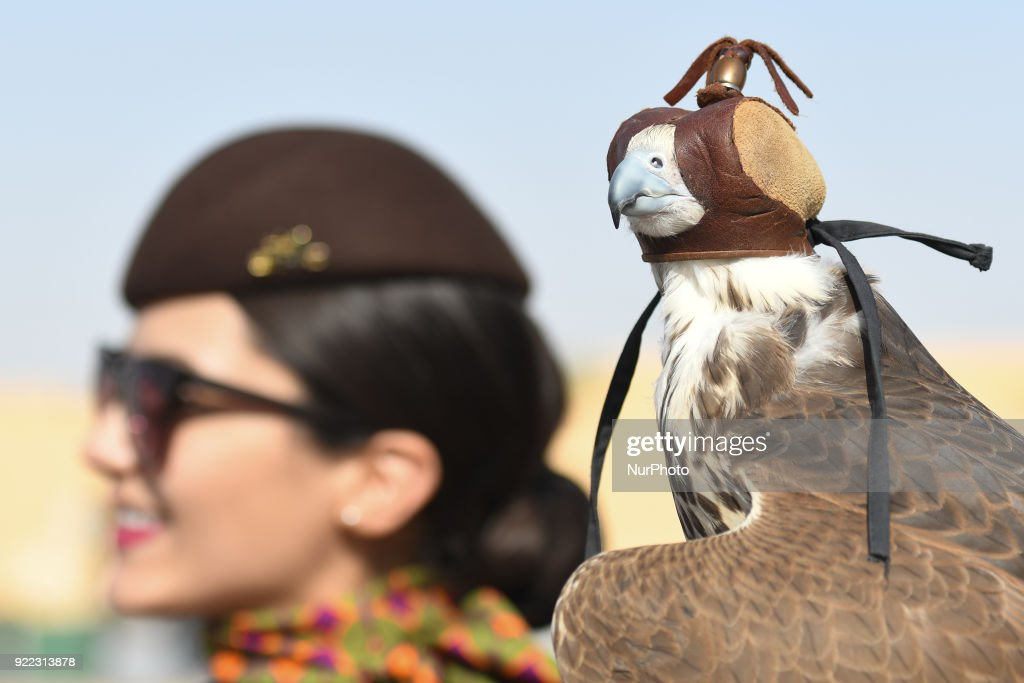 A view of a two year old falcon held by a lady during a photo session. Falconry is UAE's oldest tradition and it dates back to 2000 years that started as a source for food, to hunt hares and houbara. It was also considered a way of life for leaders of the tribe. On Wednesday, February 21, 2018, in Madinat Zayed, Abu Dhabi, United Arab Emirates.