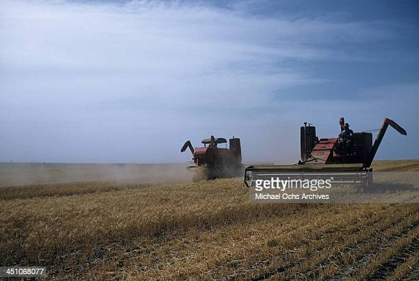 View of a wheat field as a combine tractors harvests the wheat in Oakley, Kansas.