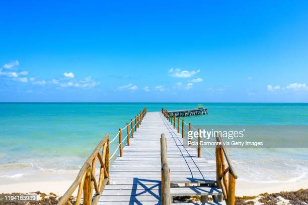 view of a wooden walking path at south beach ocean, miami, florida at sunrise - florida nature stock pictures, royalty-free photos & images