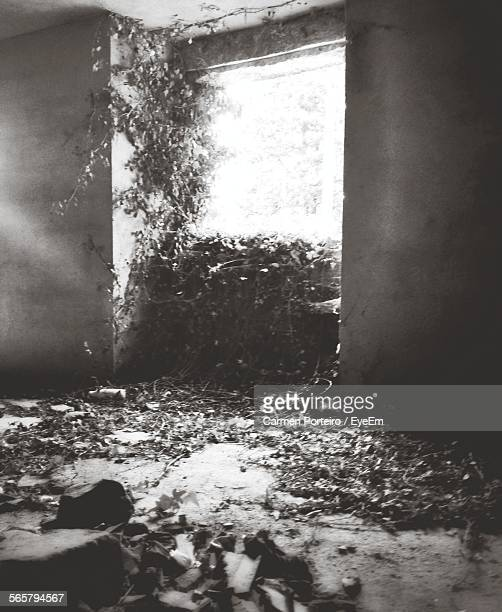View Of Abandoned House