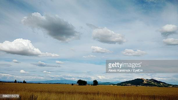 view of agricultural field against cloudy sky - corvallis stock pictures, royalty-free photos & images