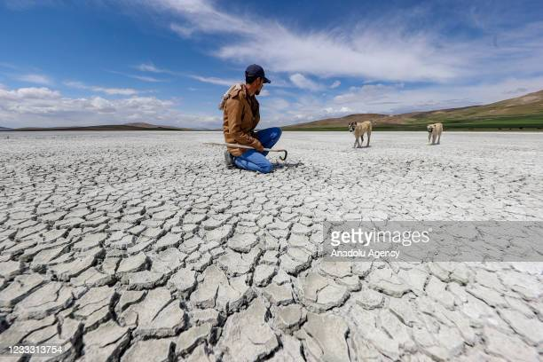 """View of Akgol, in Ozalp district of Van province of Turkey on June 7, 2021. Due to the drying up of the """"bird paradise"""", Akgol, which covers an area..."""