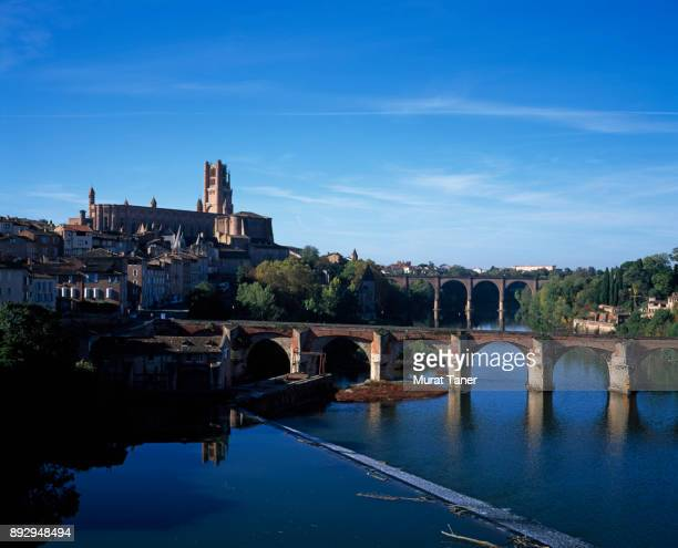 View of Albi Cathedral and Pont Vieux Bridge